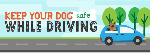 safedriving