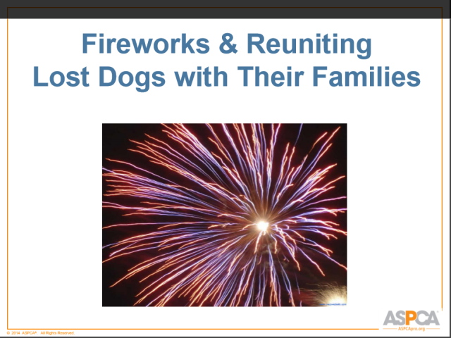 ASPCA Fireworks cover.png