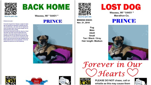 Every Missing Pet Poster Tells Story >> Lost Dogs Of Wisconsin Volunteers Providing Free Services To Help